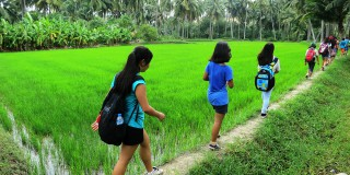 7_Home-page_school-trips_picture